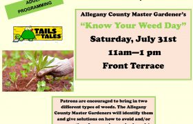 know your weed day July 31st from 11am-1pm
